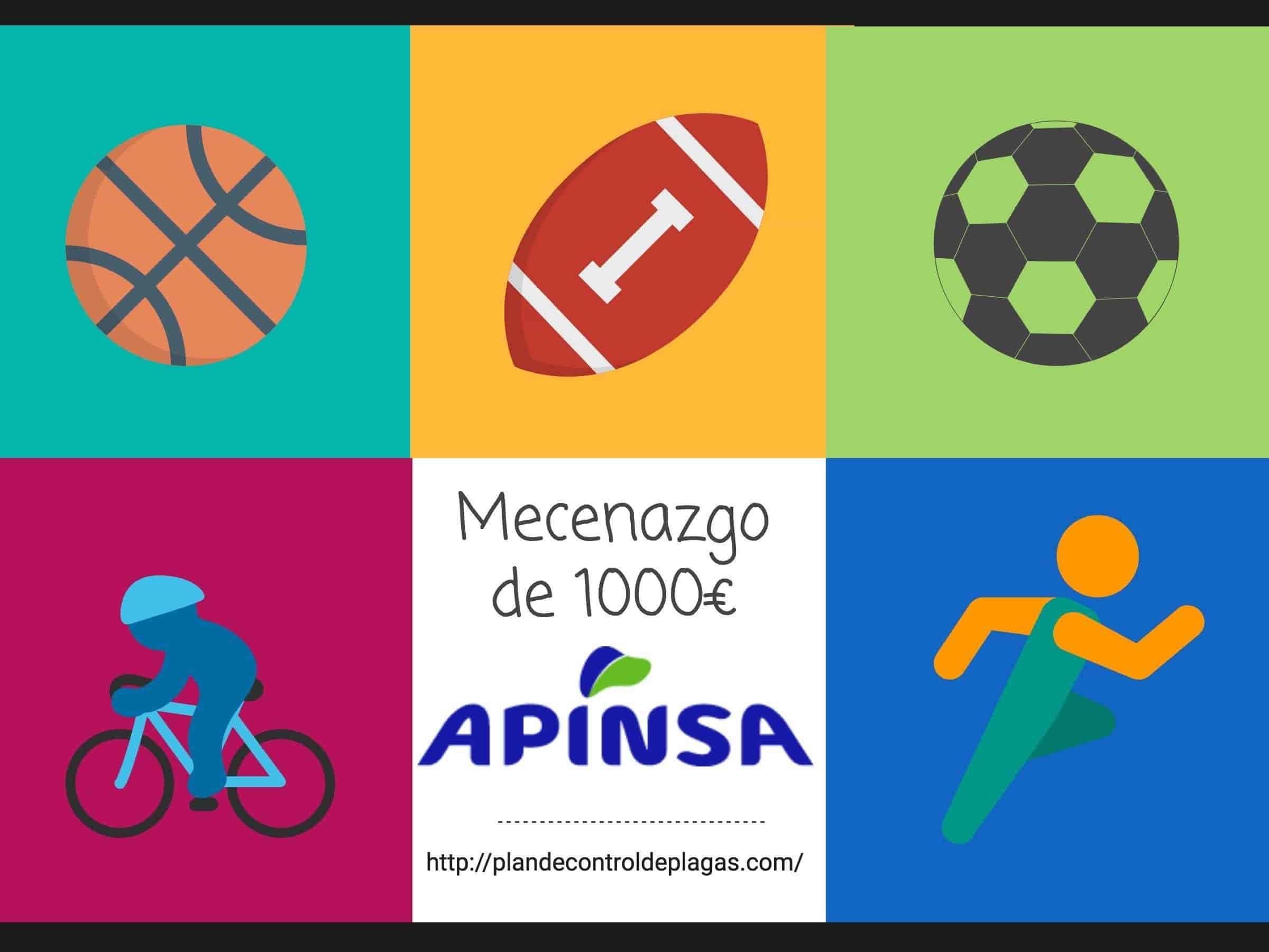 APINSA organiza mecenazgo para equipos de deporte base en Tenerife