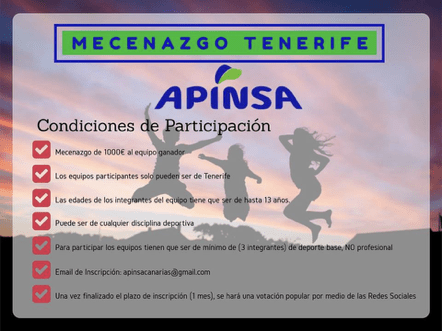 Apinsa organiza equipos de deporte